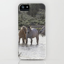 Cooling Off iPhone Case