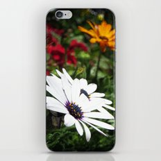 Flower Power 8 iPhone & iPod Skin