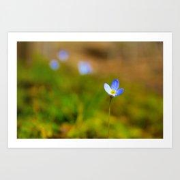 Spring in Bluet Art Print