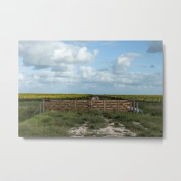 Sunflowers road towards the sea. Metal Print