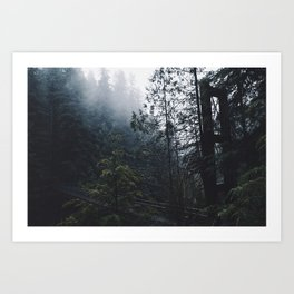 Forest Bridge Art Print