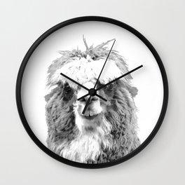 Black and White Alpaca Wall Clock