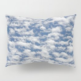THINLY VEILED INFINITY Pillow Sham