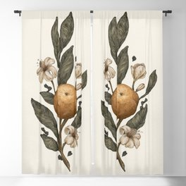 Clementine Blackout Curtain