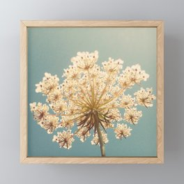 Queen Anne's Lace Framed Mini Art Print