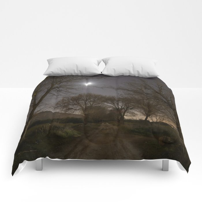 Into the Moonlight Comforters