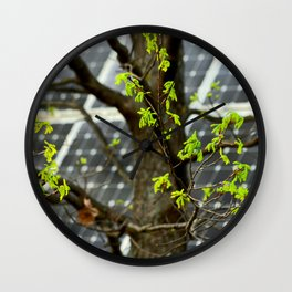 Four Seasons Photosynthesis - Spring. Blooming Oak Tree And A Solar Power Panel Wall Clock