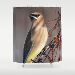 Cedar Waxwing Pose Shower Curtain