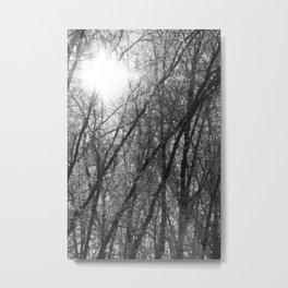Michigan Winter - Whiteout 2 Metal Print