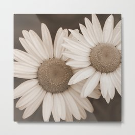 DUO A Pair of Flowers in Sepia Tones Metal Print