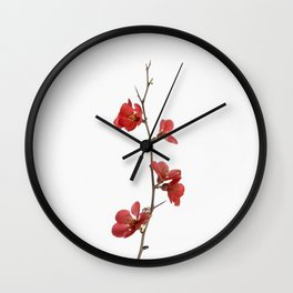 Branch with flowers Wall Clock