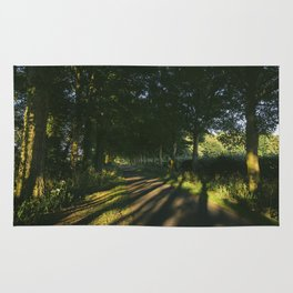 Evening sunlight on a remote treelined country lane. Litcham, Norfolk, UK. Rug