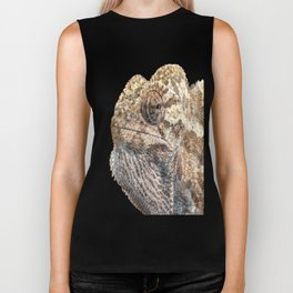 Chameleon With Sinister Facial Expression Isolated Biker Tank