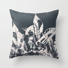 Dusk Throw Pillow
