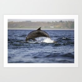 leaping dolping Art Print