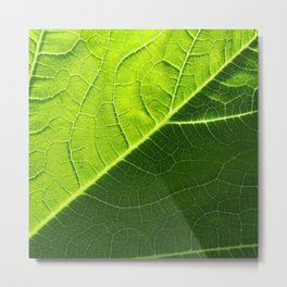 Diagonal Fronds Green Metal Print