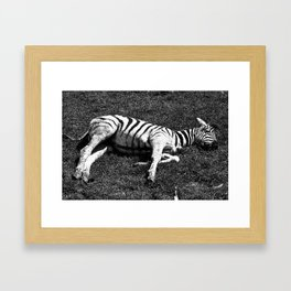 Napping texture. Framed Art Print