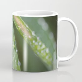 Raindrops on blades of grass Coffee Mug