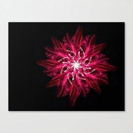 Aerial Silks Flower Canvas Print