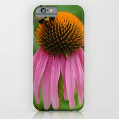 Coneflower with Bee iPhone 6s Slim Case