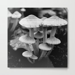 forest mushroom family abstract nature photography in black and white Metal Print