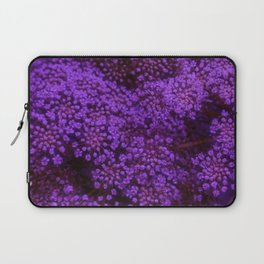 Purple Queen Anne's Lace Landscape Laptop Sleeve