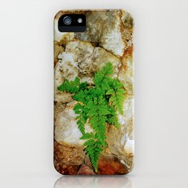 Fern and Geodes iPhone Case