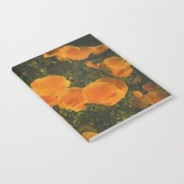 California Poppies 007 Notebook