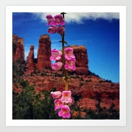 Wildflowers at Cathedral Rock Art Print