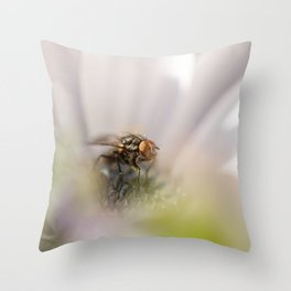 Caught in the middle... Throw Pillow