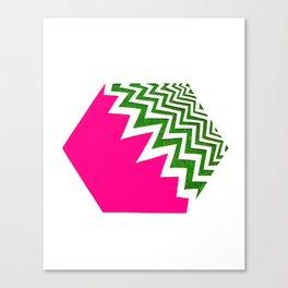 Watermelon Bizcut Canvas Print