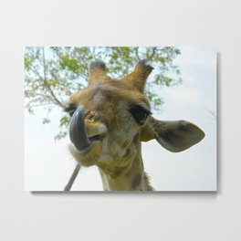 Africa's French Kiss Metal Print