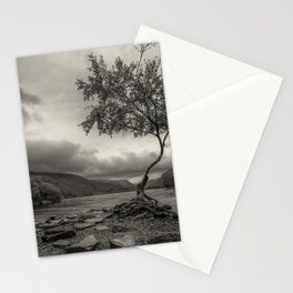 The Lonely Tree Snowdonia Wales Journey of Mountains Stationery Cards