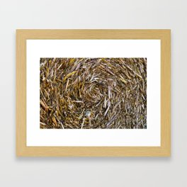 Rolled Hay Framed Art Print
