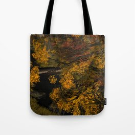 Autumn Leaves and Stream Tote Bag