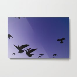 Even birds are chained to the sky.  Metal Print