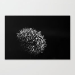 Strong One Canvas Print