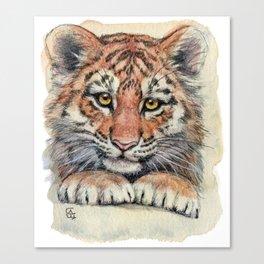 Cute Tiger Cub 903 Canvas Print