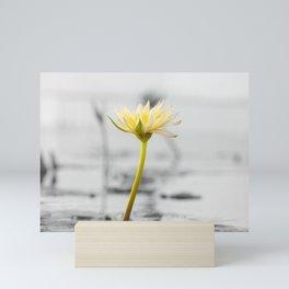 Shining Solo Mini Art Print