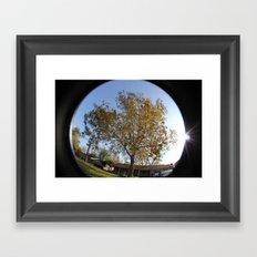 Sunny Trees Framed Art Print