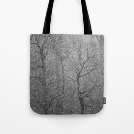 The Lines of Trees in a Whiteout Tote Bag