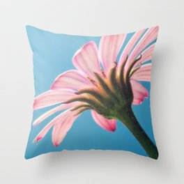The sky's the limit. Throw Pillow