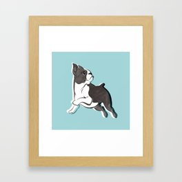 Boston Terrier Love Framed Art Print
