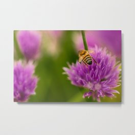 Bee and chive Metal Print