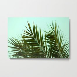 San Diego Palm Fronds Metal Print