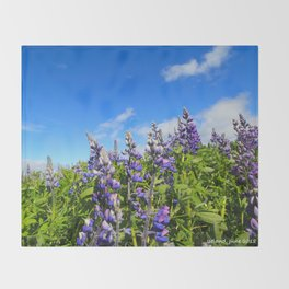 Summer Lupine in Iceland Throw Blanket