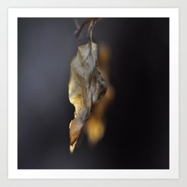 Dancing Leaf Art Print