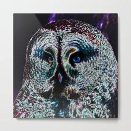 Owl_20170601_by_JAMColorsSpecial Metal Print