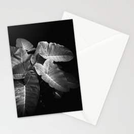 Elephant Ears in the Dark Stationery Cards