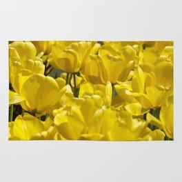 Darwin Hybrid Tulips Rug
